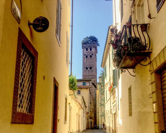 Lucca Italy Torre Guinigi