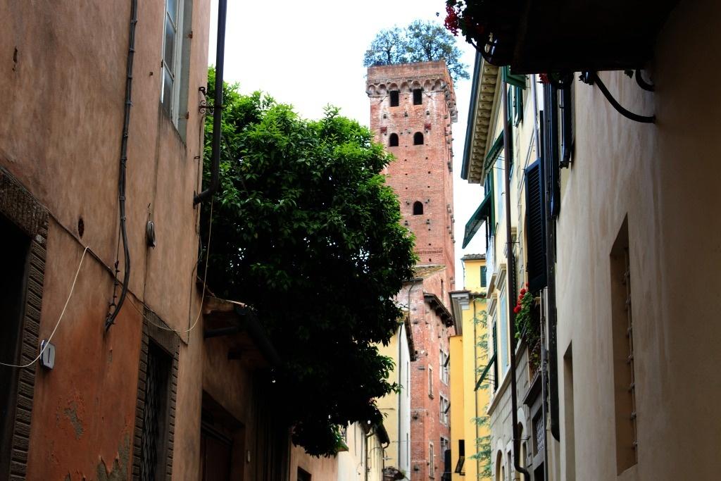 Italy Lucca Torre Guingi